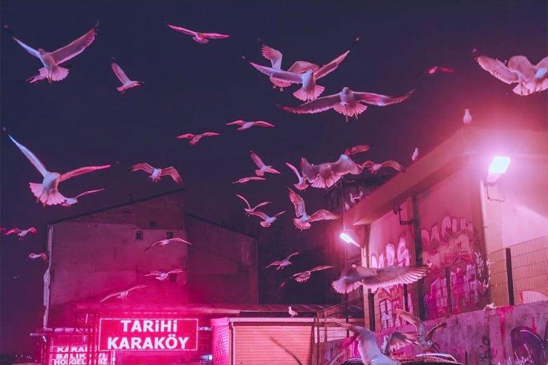 Neon ışıkları altında İstanbul geceleri