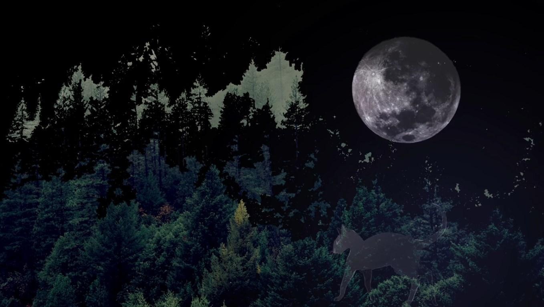 Ay ışığında büyüleyici bir yaradılış tasviri