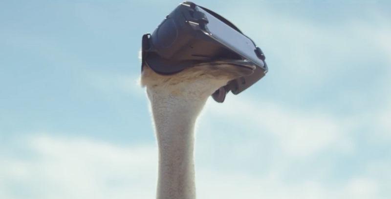 Samsung'un VR başlığı ile devekuşu da uçuyor