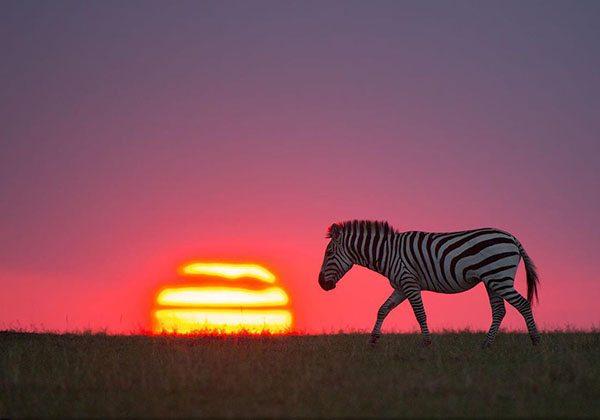 National Geographic, en güzel doğa fotoğraflarını paylaştı