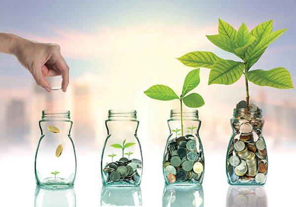 Girişimcilik dizisi 2: Tutku > para