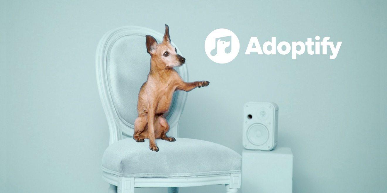 Müzik zevkine göre hayvan dostunu seçmek isteyenler için: Adoptify