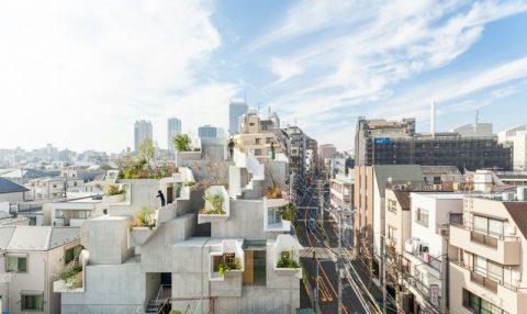 Japon mimar ağaçlardan esinlenerek ev yaptı