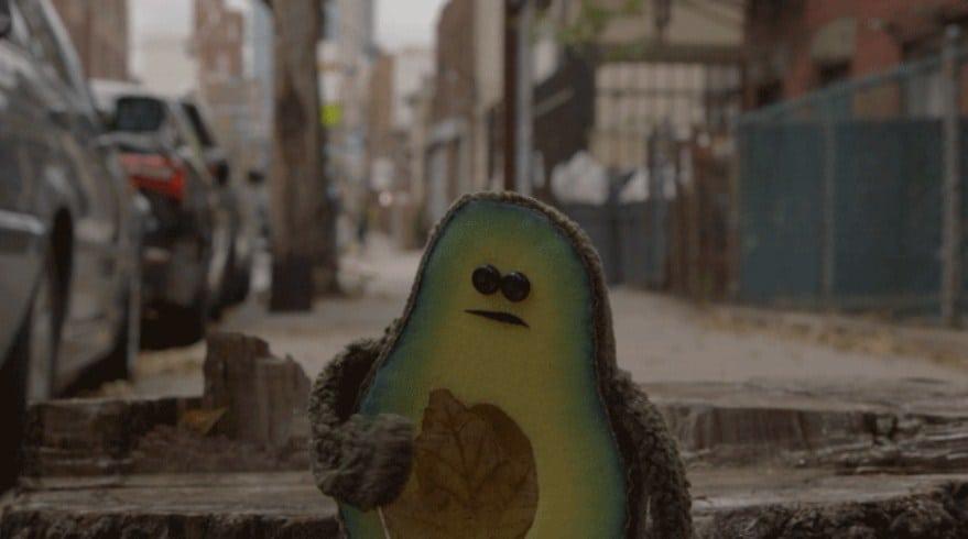 Bir avokadonun gözünden yalnızlık ve bir 'öteki' arayışı